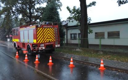 Tehnická pomoc ořez stromu u Progresu v Šunychlu 04.10.2016